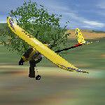 Aerobird Xtreme